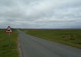 John O' Groats to Lands End Gallery - Gallery Image 139