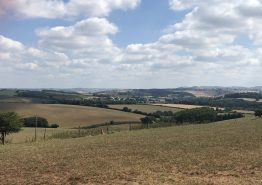 Day 16 – Tiverton to Roche - Gallery Image 36