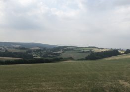 Day 15 – Bath to Tiverton - Gallery Image 8