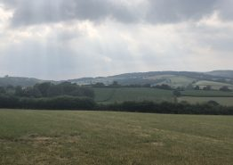 Day 15 – Bath to Tiverton - Gallery Image 9