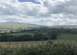 Day 16 – Tiverton to Roche - Gallery Image 29