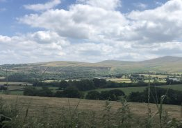 Day 16 – Tiverton to Roche - Gallery Image 28