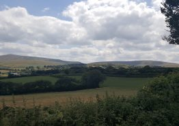 Day 16 – Tiverton to Roche - Gallery Image 26