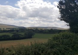 Day 16 – Tiverton to Roche - Gallery Image 23