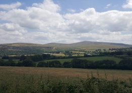 Day 16 – Tiverton to Roche - Gallery Image 22