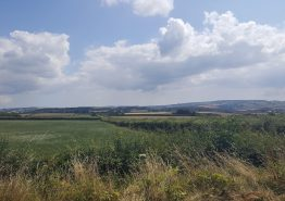 Day 16 – Tiverton to Roche - Gallery Image 15