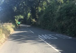 Day 16 – Tiverton to Roche - Gallery Image 10
