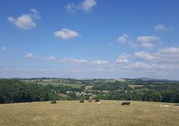 Day 16 – Tiverton to Roche - Gallery Image 8