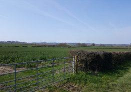 Evesham to Chinnor - Gallery Image 13
